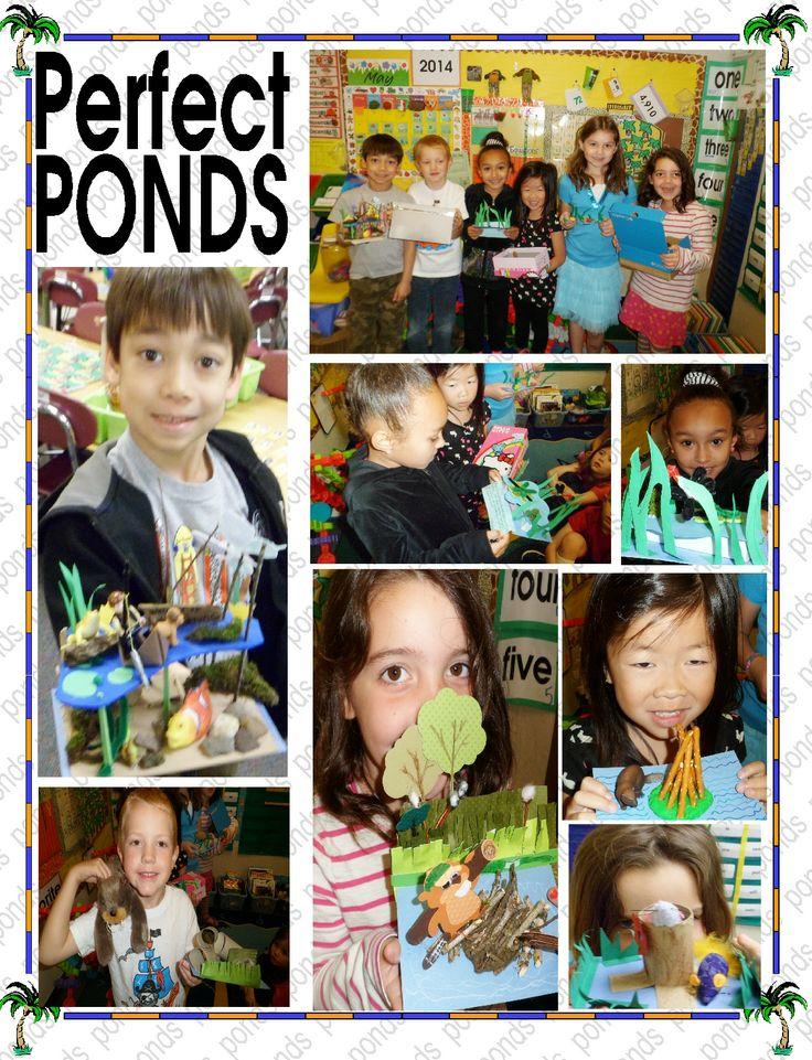 we did pond habitats