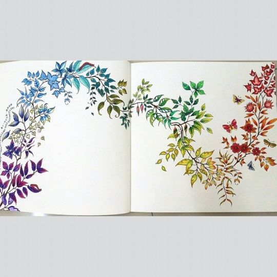 Johanna Basford | Picture by Sharon Ng | Colouring Gallery