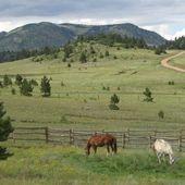 Southern Colorado Horse Ranch Ranch for sale in Canon city, Colorado :: HorseClicks