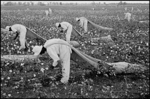 Un libro del mexicano Andrés Reséndez, finalista del National Book Award, revela detalles desconocidos sobre la esclavitud en el Nuevo Mundo y la incluye como uno de los principales motivos de mortandad