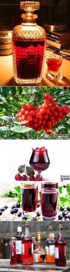 Поиск на Постиле: настойки из ягод