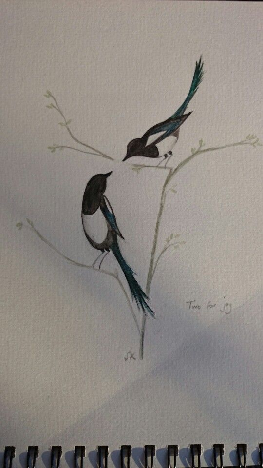 Two for joy magpies water colour. Painted for brother 's wedding invite.                                                                                                                                                                                 More