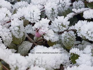 Silvis Stampinzauber                                     : Fotos - Winterimpressionen 2016 / 2017