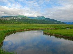 Wildlife Viewing at Potter Marsh - Anchorage Area, Alaska Department of Fish and Game