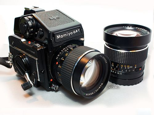 Thinking of Getting Into Medium Format Cameras? Here's The Lowdown