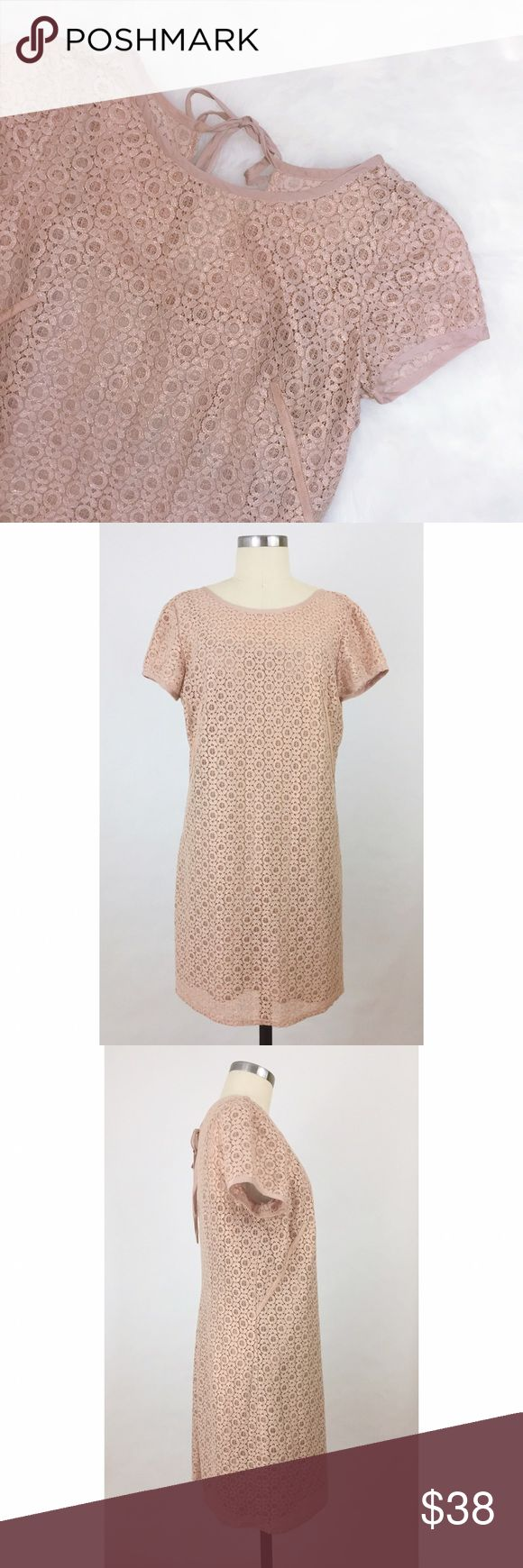 •LOFT• XO Pink Metallic Lace Dress This stunning lace dress in a light pink threaded with golden metallic is simply perfect for a night out! Pair with gold or nude flats and statement earrings to complete the look! Dress is gently worn; no signs of wear. LOFT Dresses Mini