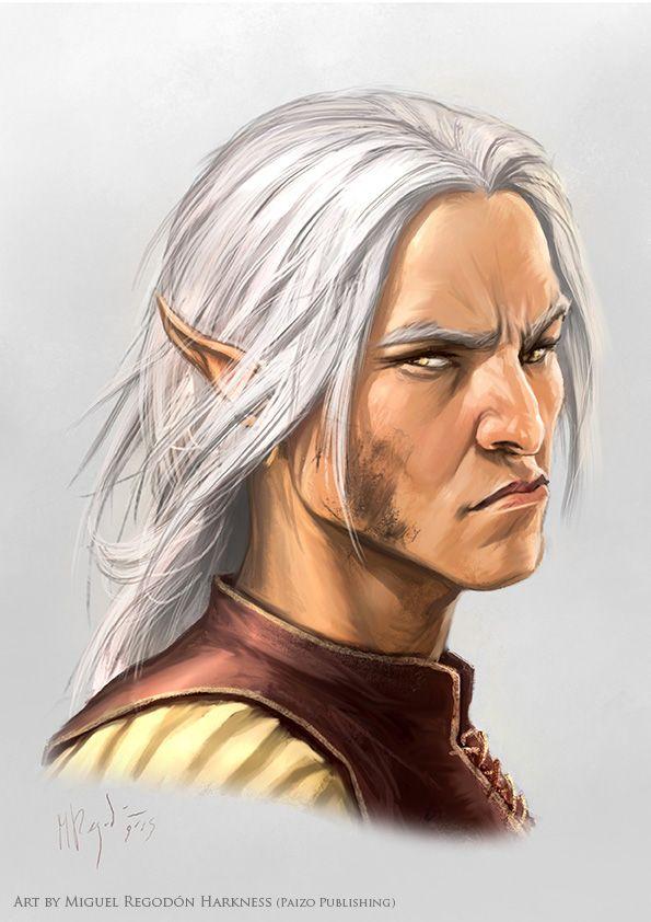 male elf elder portrait  whtbg