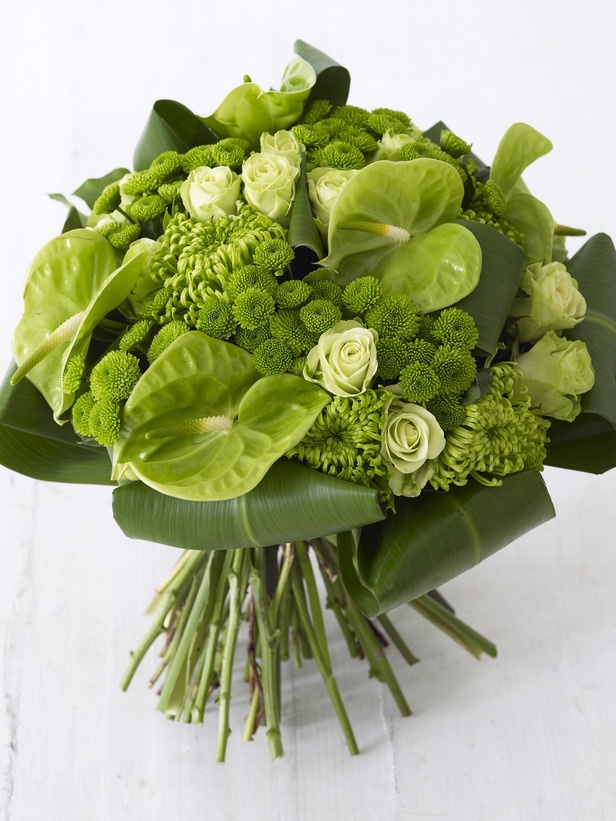Gorgeous greens! Anthuriums, green Fuji mums, roses + green buttons.