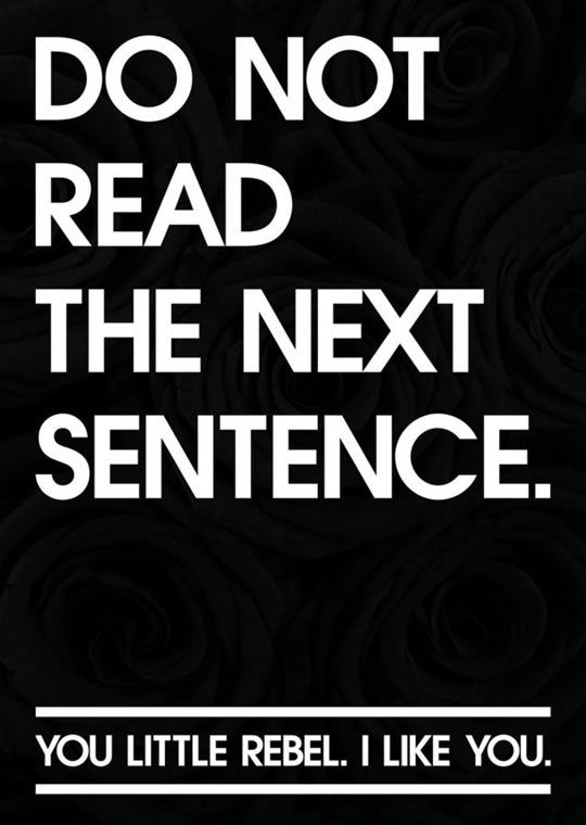 DO NOT READ THE NEXT SENTENCE. you little rebel. I like you.