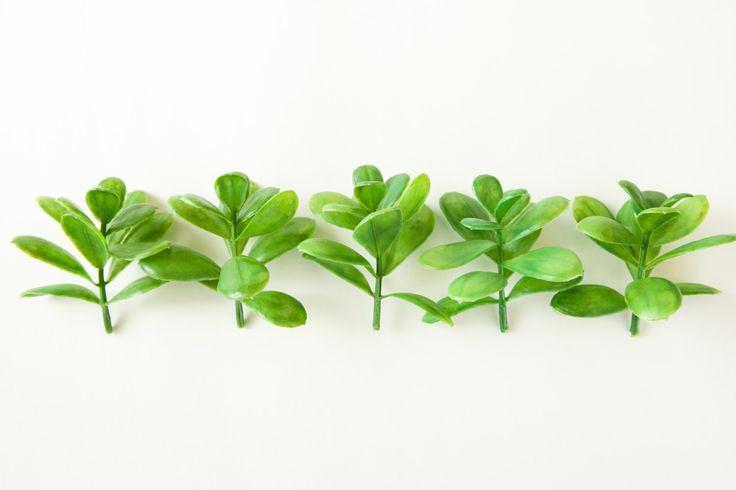 Faux succulents- Set of 5 Artificial Succulent Sedum Plants in Green _ Fake succulents _ artificial succulents - Item 0311 by SimplySerraFloral on Etsy