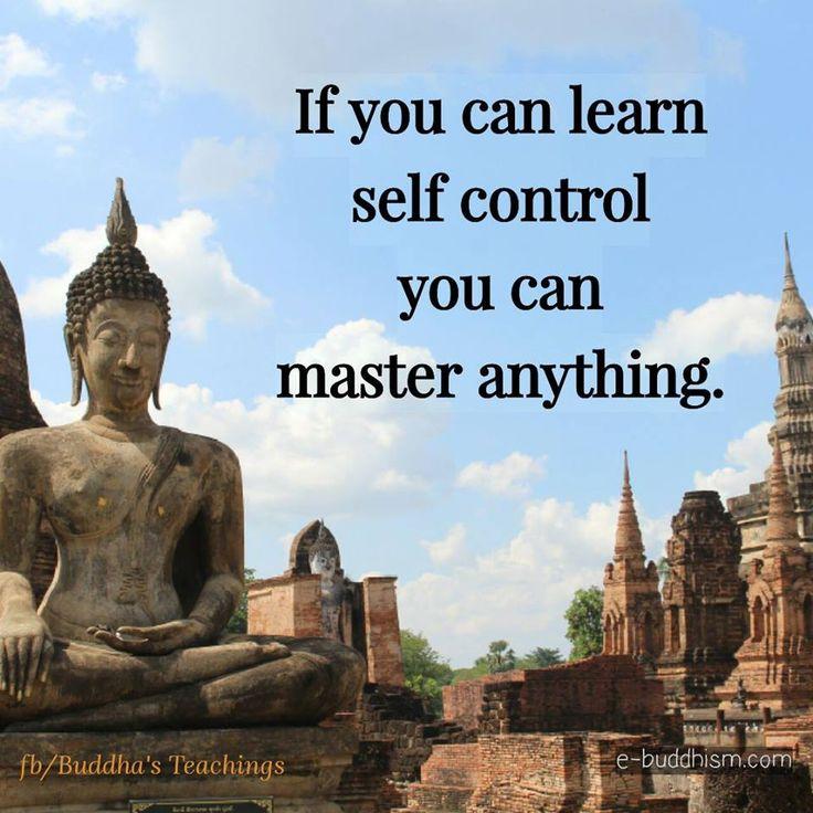 Gautama Buddha Quotes Fascinating 197 Best Buddha Quotes Images On Pinterest  Buddha Quote