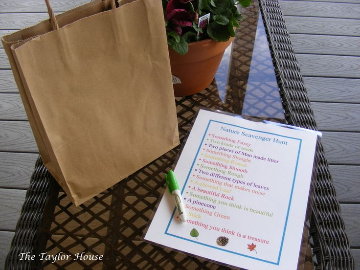 Nature Scavenger Hunt for Kids {Free Printable} - The Taylor House