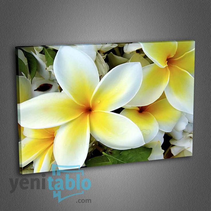 Çiçek Tablo http://www.yenitablo.com/c8-cicek-tablo