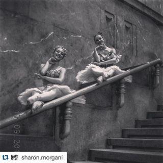 milanocentraleig #Repost @sharon.morgani ・・・ We're dreamers✨ #Milan #Ballet #Dancers #StazioneCentrale #TrainStation #Dreams #MyDream #Dreamers #Tutú #PointShoes #Scala #Dance #LoShoppingClassico