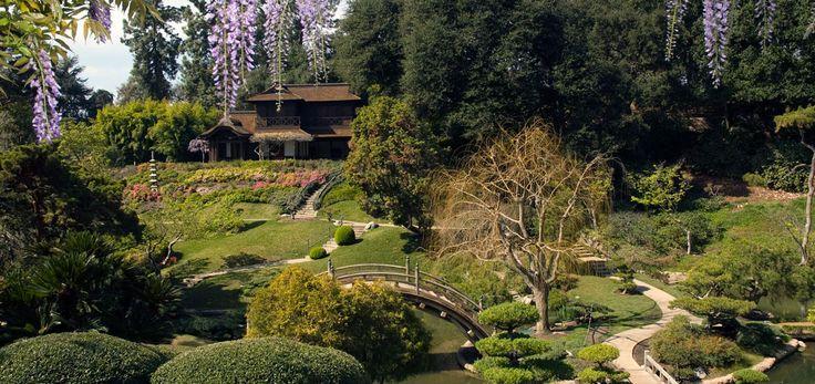 Japanese Garden - The Huntington Botanical Gardens