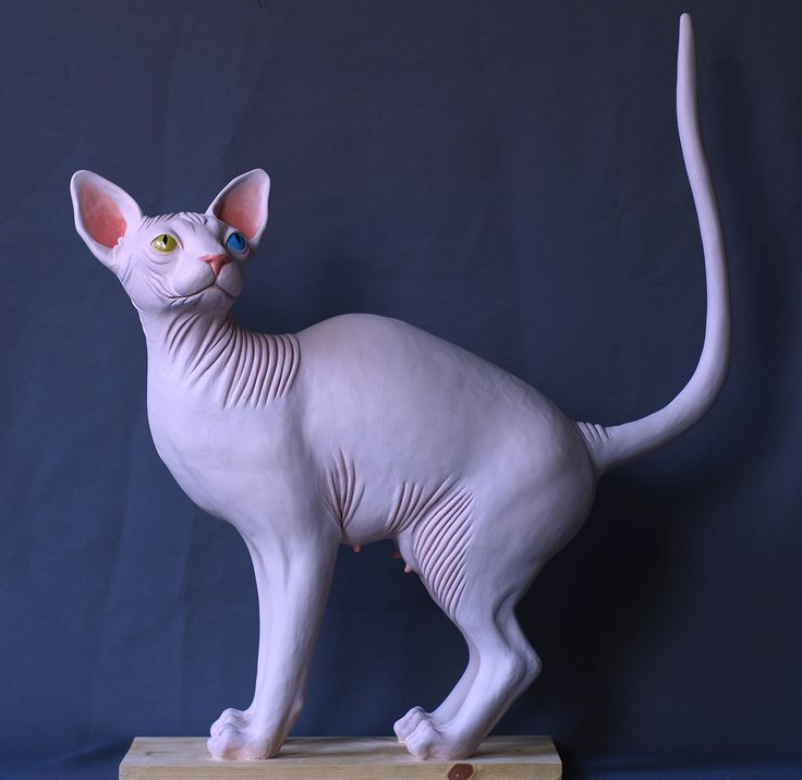 Marianne Siri, New Don Sphynx, 68 x 57 x 16, Sculpture