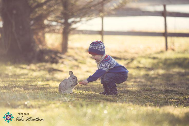 http://idahvattum.no/sivert-og-kaninen/