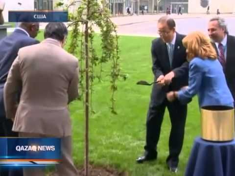 "Tantv.kz - На территории штаб-квартиры ООН прошла церемония высадки ""дерева мира и единства"""