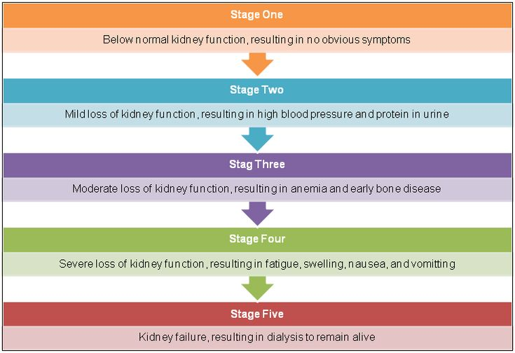 KidneyCoach: The 5 Stages of Kidney Disease