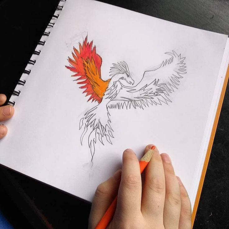 A drawing by my nine year old based on a Phoenix image he found. What talent even if I am a little biased. #buddingartist #phoenix