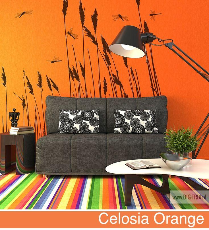 PANTONE 2014: Celosia Orange wallpaper by Big-trix.pl | #pantone #pantone2014 #celosiaorange #wallpaper