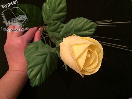 Роза на стебле своими руками мастер класс | Роза из фоамирана Роза один из цветов которые очень любят садоводы и рукодельницы. Даже новички всегда начинают создавать первыми розы, а уже потом другие цветы. Розы настолько красивы и изящны, что невозможно в них не влюбится. Розы самые популярные цветы которые дарят на праздники, да и просто …