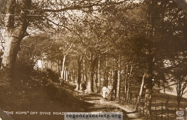 The Copse, off Dyke Road, Hove has existed for more than 100 years. Originally the object of quite a lengthy country walk from Hove, it is now almost hemmed in by houses but among the trees it is little changed from this scene of 1911.