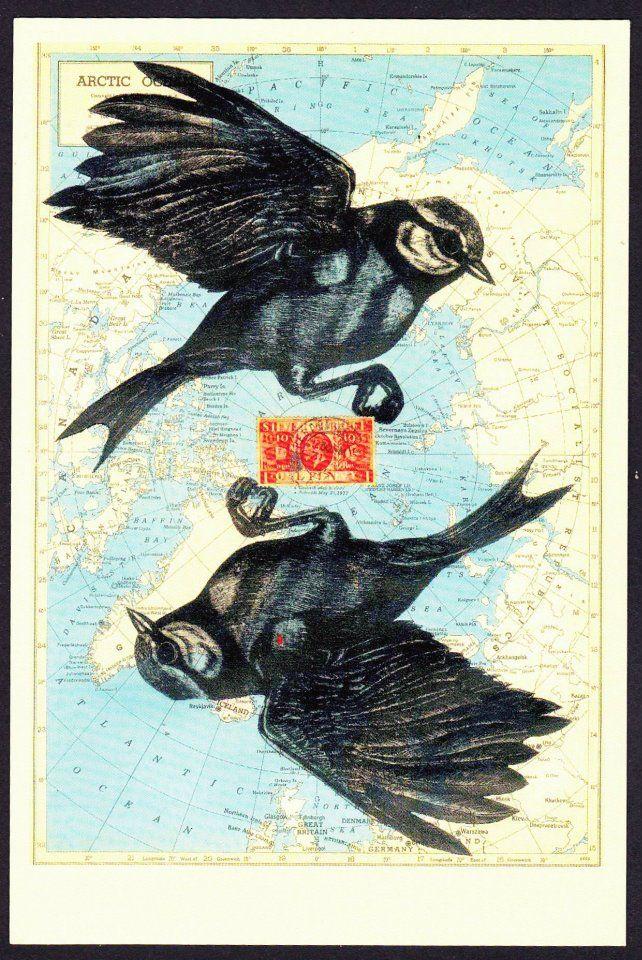 Avant Card 13373