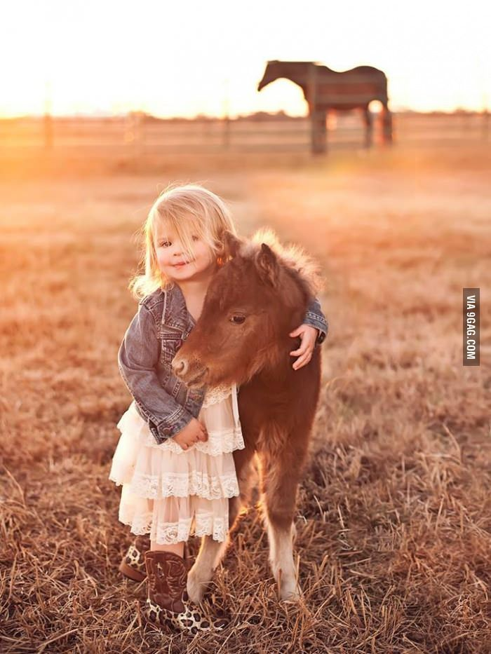 Newborn mini horse and cute little girl pose for photo shoot. Result = Adorable