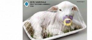 Menù alternativo per festeggiare la Pasqua