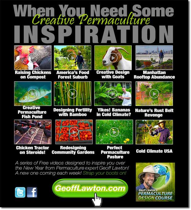 Need Some Permaculture Inspiration? Watch More Free Geoff Lawton Videos!