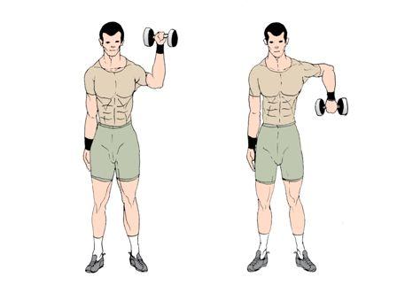 shoulder rotation with dumbbell  shoulders  pinterest