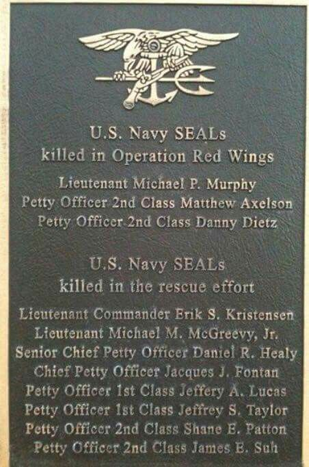 RIP Operation Red Wings. It's our duty as Americans to remember these brave men and give thanks for their service and sacrifice to bring the fight to OUR enemies.