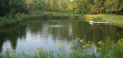 A mature fishing pond.