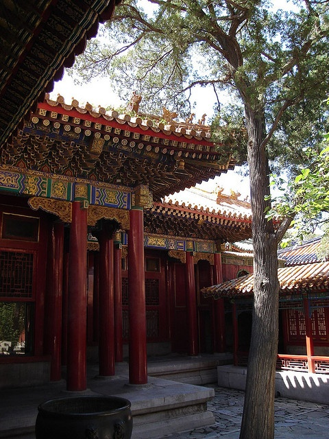 Forbidden City Bejing by anne_bowden, via Flickr SHARE YOUR TRAVEL EXPERIENCE ON www.thetripmill.com! Be a #tripmiller!