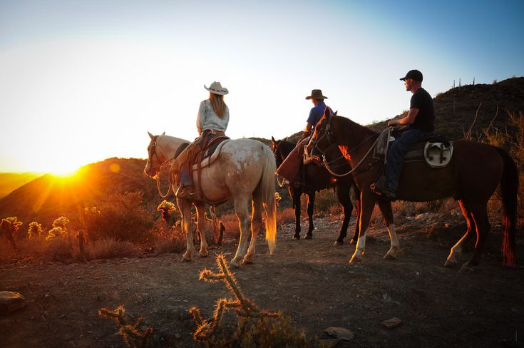 """Jeff and Deb Bitton from Corral West Horse Adventures got in touch with us here at Things to Do in Phoenix with Kids """"dot com"""" and shared what they are doing at Corral West Horse Advent…"""