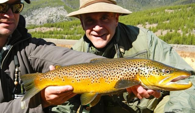 Montana fly fishing guide offers up tips on catching whopper brown trout in the fall.