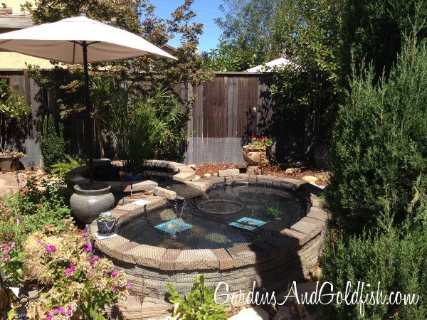 228 Best Ponds Images On Pinterest Pond Ideas Backyard Ponds And Garden Ponds