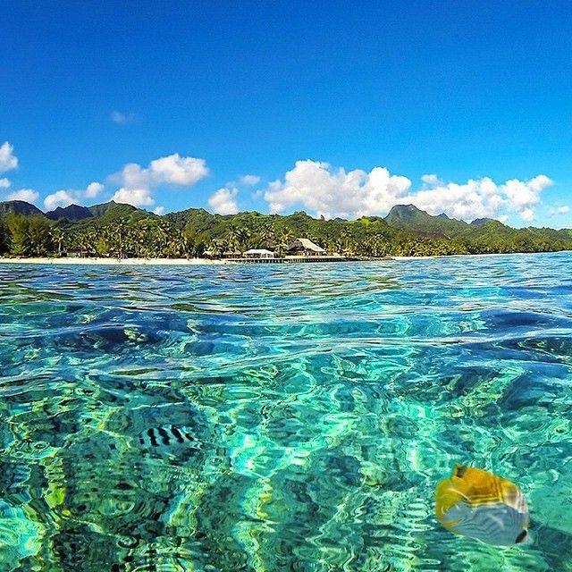 The reef pool, Rarotonga, Cook Islands