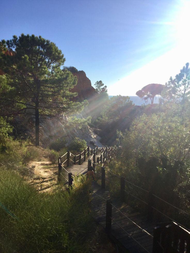 Path to Praia da Falesia