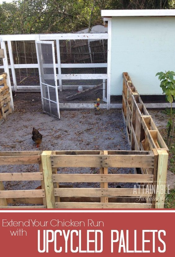 Recycle pallets to create a free chicken run to give your hens more space to roam.: