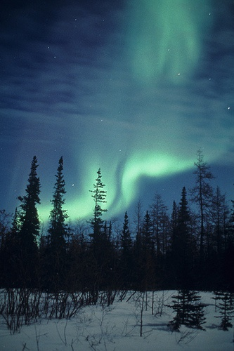 Northern lights in Churchill, Manitoba, Canada. Photo by Travel Manitoba.I want to go see this place one day.Please check out my website thanks. www.photopix.co.nz