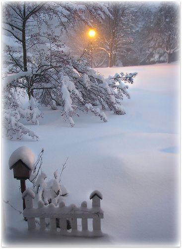 Snow:).../