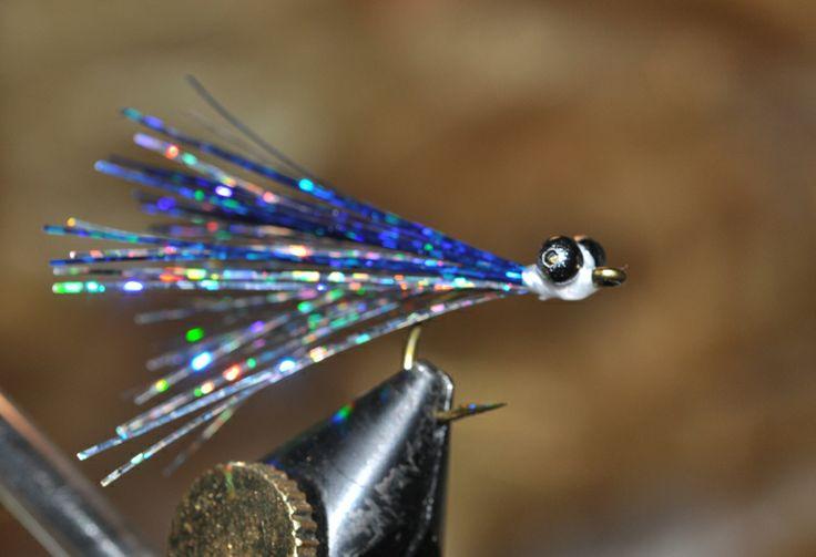 Blu Fly