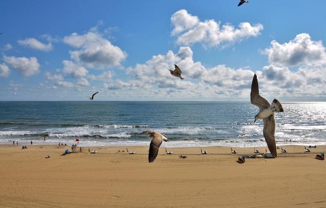 Virgina Beach. Been here too :)