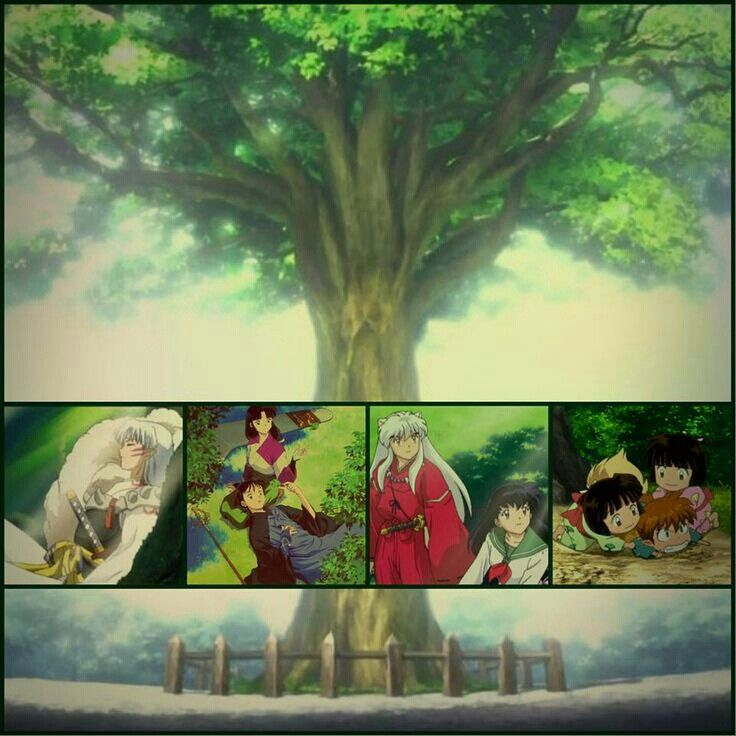 562 best images about inuyasha on pinterest