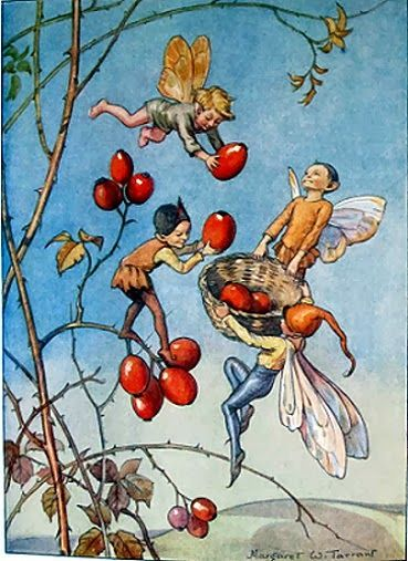 March House Books Blog: Joan in Flowerland by Margaret W. Tarrant- Rose Hips