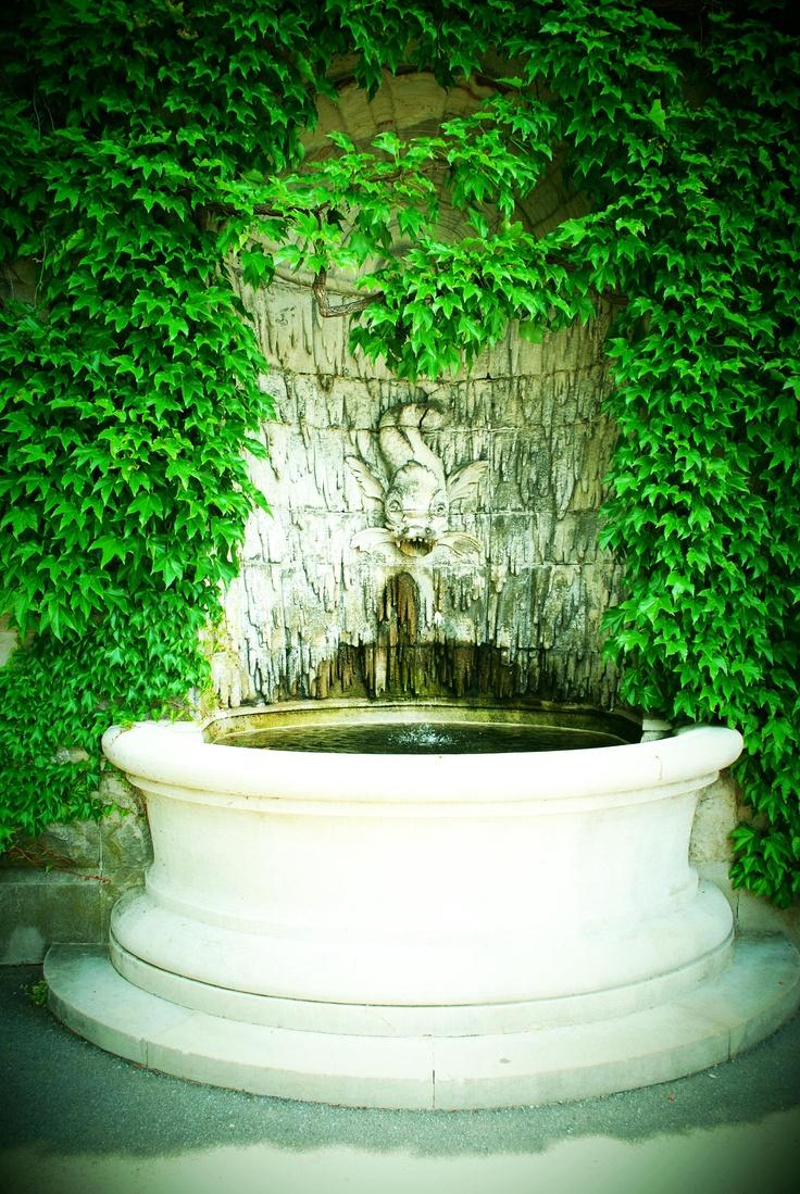 15 best biltmore estate inn dream a little dream images on biltmore biltmore estateasheville nc malvernweather Images