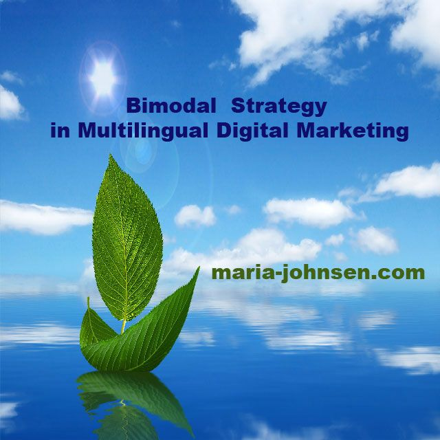 How Multilingual Digitial Marketing Should Be | Multilingual SEO Blog