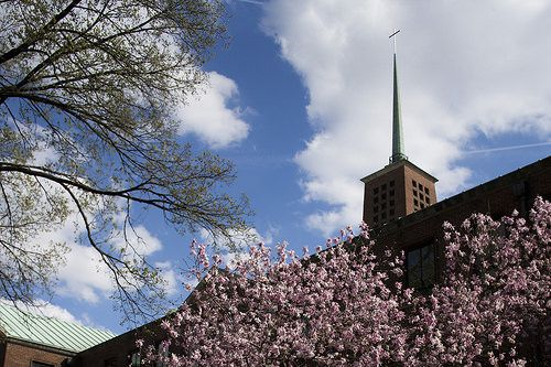 Our Divinity School #spring